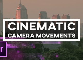 Premiere Pro - 5 cinematic camera movements like pan & zoom and fake dolly